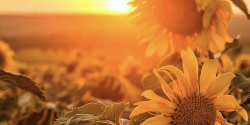 Sunflower Soul Hike - Tribe Saturday & WOCO Hike + Sound Healing Meditation