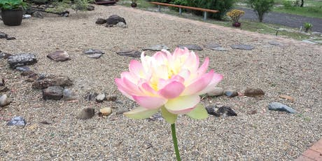 Wisdom of Stillness: 5-day New Year Retreat tickets