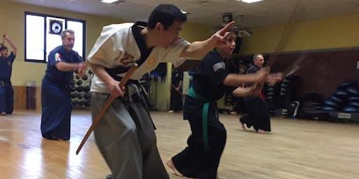 Lezione di prova HAIDONG-GUMDO (spada coreana)