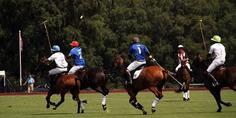 Polo Social Event with Bubbly & Snacks at Museumplein in Amsterdam tickets