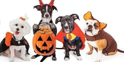 Howl-o-Ween for Hounds!