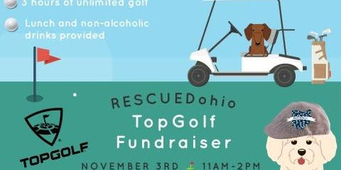 Top Golf Fundraiser