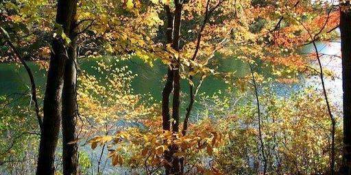 Considerations of Thoreau: Contemplating  Naturalist, Philosopher, Citizen