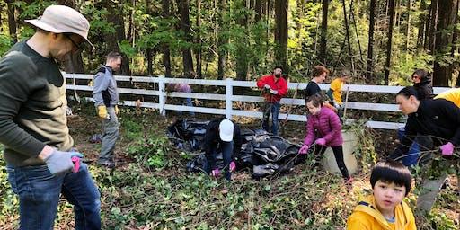 Bridle Trails State Park Stewardship - National Public Lands Day