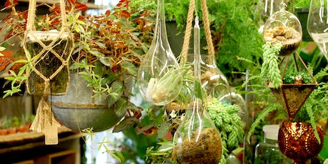 Terrarium Building - An Advanced Guide to Creating a Living Ecosystem tickets