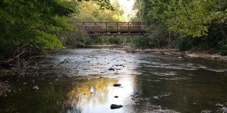 Hiking and River Sounds Forest Bathing Meditation - Yoga Option tickets