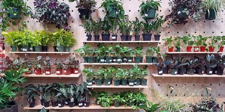 Houseplant 101 - A Beginner's Guide to Plant Parenthood tickets