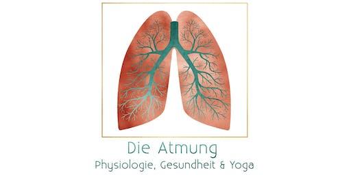 Die Atmung - Physiologie, Gesundheit & Yoga