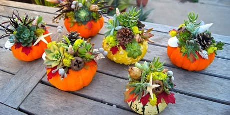 Create fall decor for your home while boosting your immune system! tickets