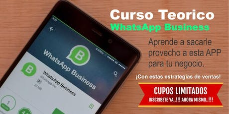 Curso Teórico WhatsApp Business I entradas