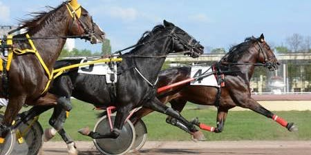 MTA Southern Mainland Region: Day At The Races, Invercargill