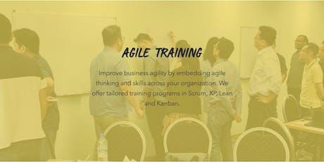 Agile Training for Companies Auckland tickets