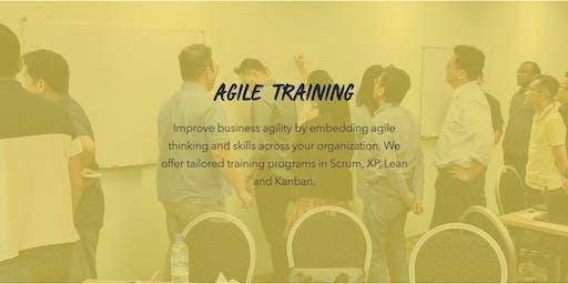 Agile Training for Companies Shanghai
