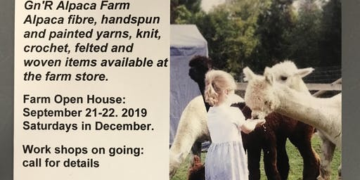 Alpaca Farm - Annual Open House