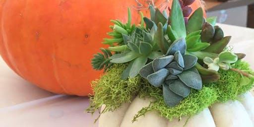 Succulent and Pumpkin Centerpiece