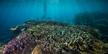 Great Barrier Reef Foundation Project Information Session: Hervey Bay tickets