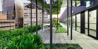 Green Campus Day: UTS green roofs