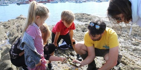 Family Rock Pooling Adventure tickets