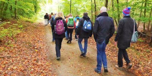 """Do,03.10.19 Wanderdate """"Singlewanderung -  Türme, Teiche und Quellen bei Darmstadt für 50+"""""""