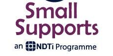 Small Supports Market Development