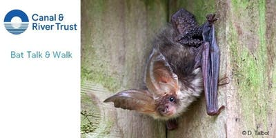 Bat Walk - Free Event