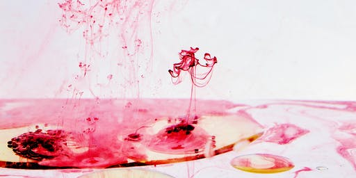 Berlin Science Week 2019 - Art Meets Science