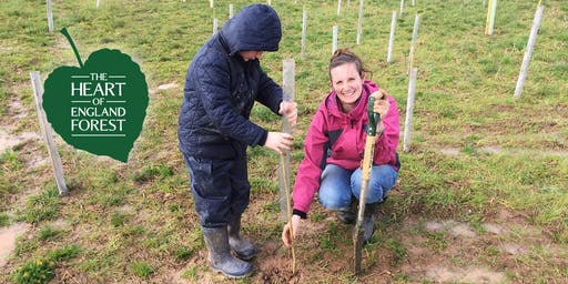 Family Tree Planting - Half Term Event