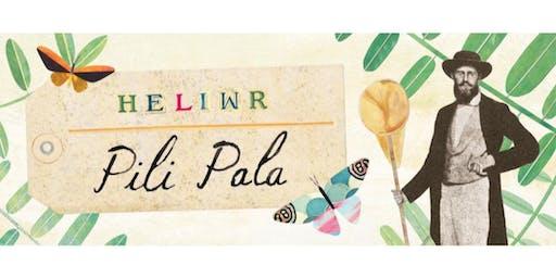Heliwr Pili Pala (Perfformiad)