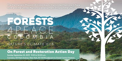 Forests4Peace Colombia: Nature's Climate Hub