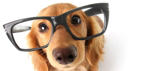 PUPPY TRAINING (LEVEL 1) Saturday, St Catherine's Park, Lucan tickets
