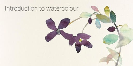Introduction to Watercolour - with a focus on flowers + plants