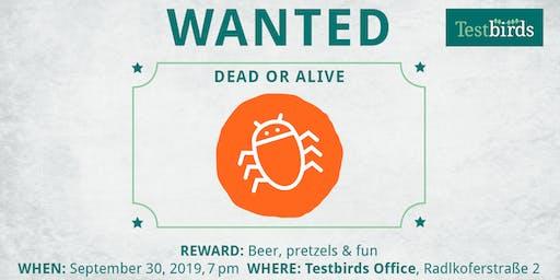 Bug Hunting @ Testbirds