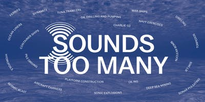 Sounds Too Many by Francesca Thyssen-Bornemisza