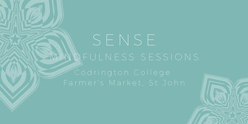 Sense - Mindfulness Sessions (12pm)
