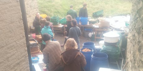 Apple Pressing & Cider Making tickets