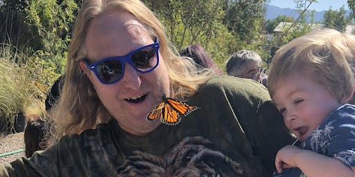 Monarch Butterfly Tag & Release