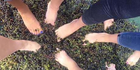 TIPSY - GRAPE STOMP Tour! tickets