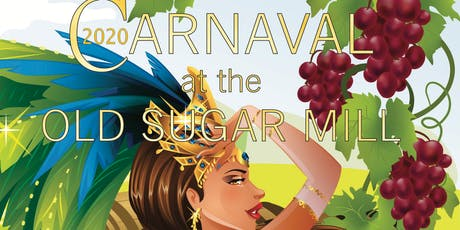 8th Annual Brazilian Carnaval tickets