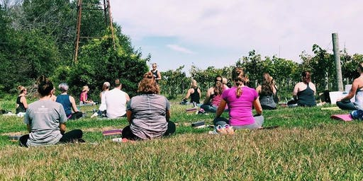 Carpenter Creek Cellars Yoga in the Vines
