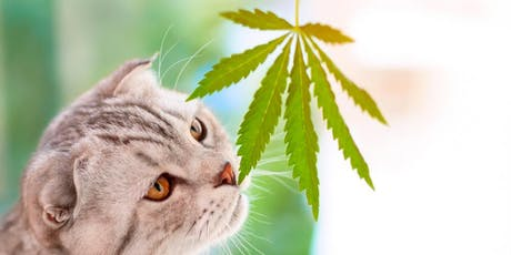 Symposium On Cannabis in Veterinary Medicine tickets