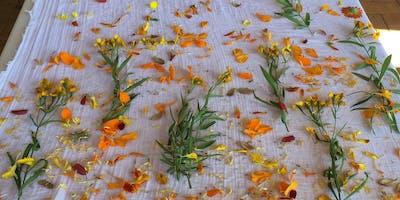 Introduction to Botanical Dyeing- Bundle Dyeing