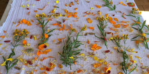 Introduction to Botanical Dyeing- Bundle Dyeing