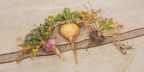 Medicinal Maca Masterclass -for hormones, stress, fatigue and mental health tickets