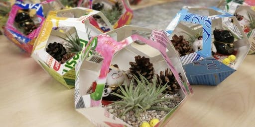 Youths Celebrate! Upcycling Workshop: Air Plant Terrarium