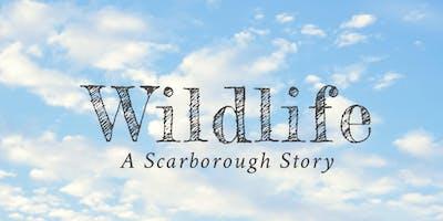 Wildlife Screening / Scarborough Panel