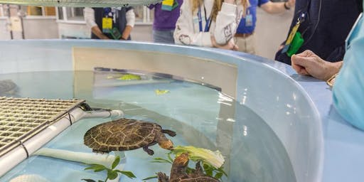 Tours of the National Aquarium Animal Care and Rescue Center