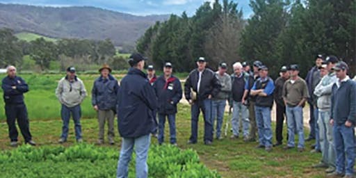 Sustainable and Adaptive Pastures Open Day 2019 - Yarck