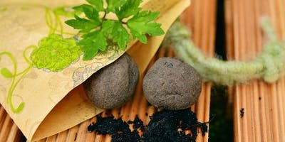 Seed Bombs! - October School Holidays - Campbelltown Library