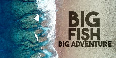Big Fish Big Adventure tickets
