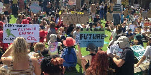 Struggles with Scale, Strategy, and Stewardship: fifty years of environmental activism